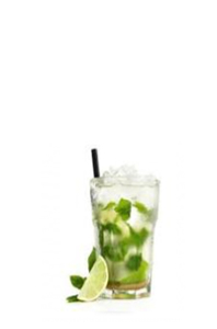 Mojito Normal (330ml)